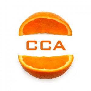 CCA - Vitamine für Ihre IT